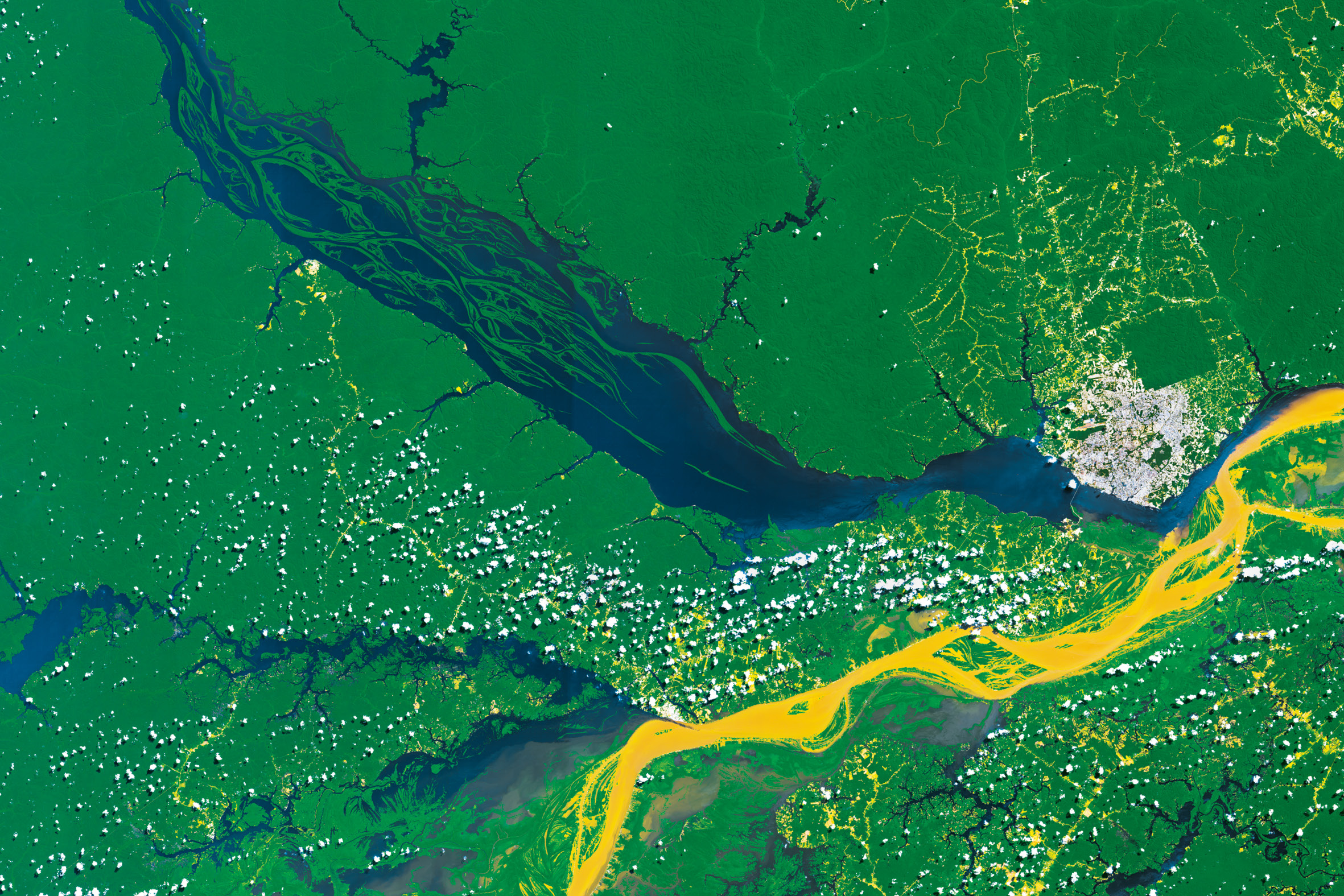 Rio Negro, the largest left tributary of the Amazon River (Sentinel-2A image ©ESA)