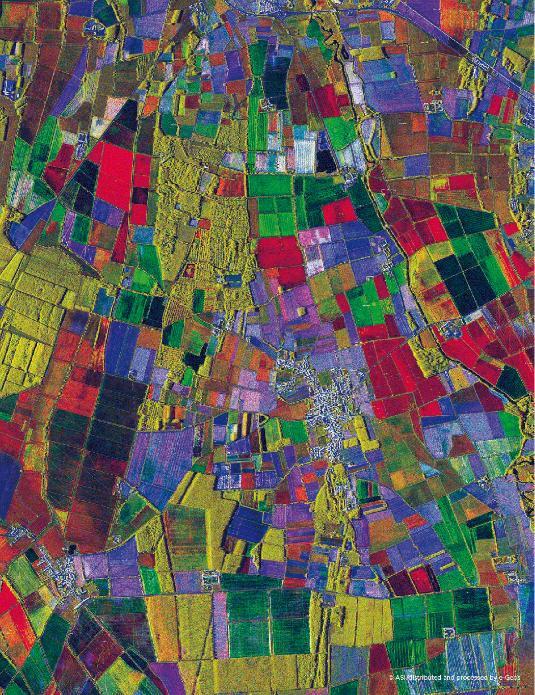 Rice paddies and vineyards characterise the Italian landscape with its harmonious fusion of lines and colours. The false-colour radar image shows the changes in the vegetation cover over time. 45° 11' N, 08° 53' E Cosmo-Skymed © ASI/distributed and processed by e-Geos